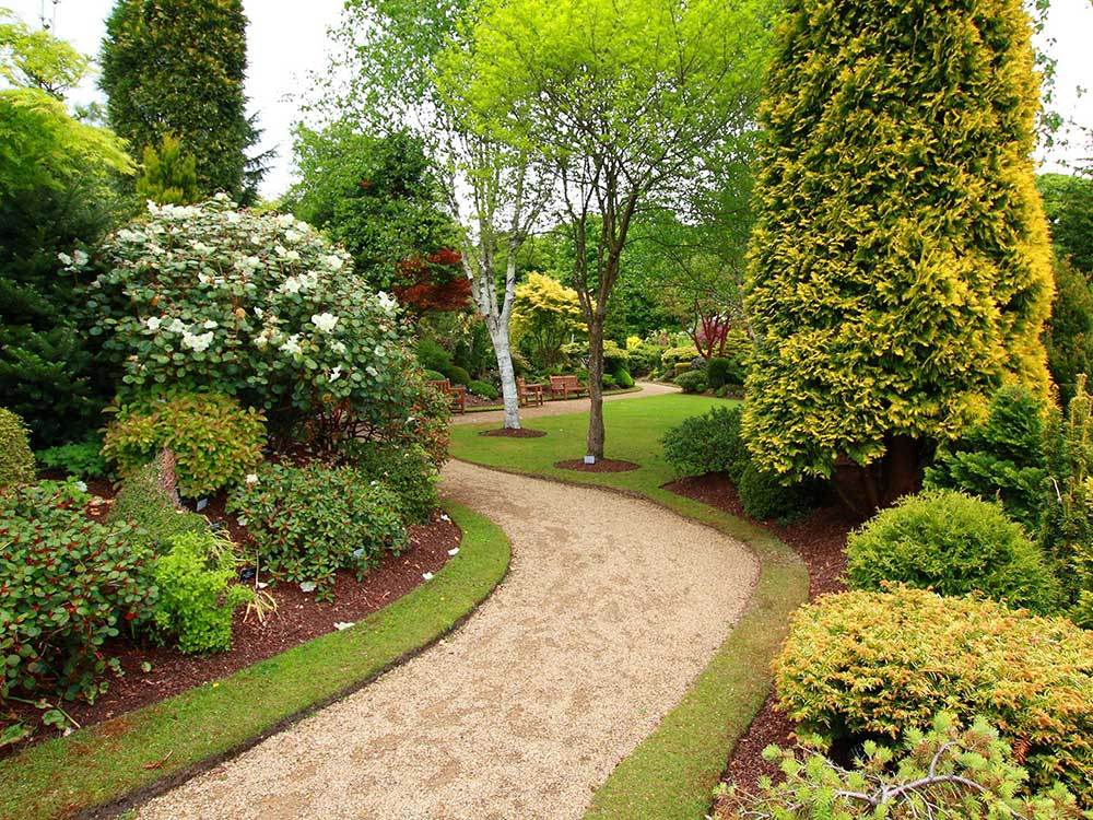 Landscaping Lawn Maintenance Service